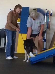 Nikki doing same-side leg lifts.